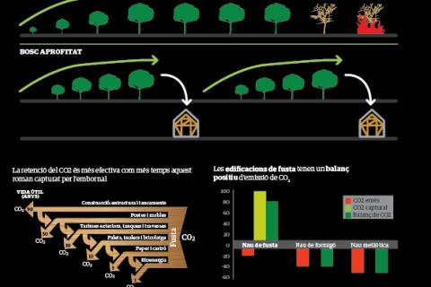 Madera: Un material sostenible